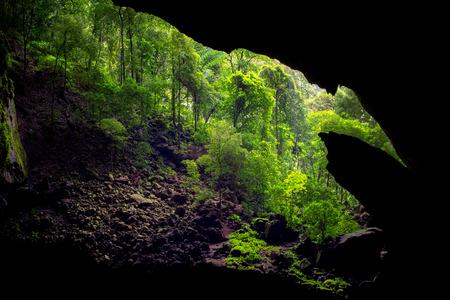 Entrance of the Deer cave in Gunung Mulu, Sarawak, Borneo, Malaysia