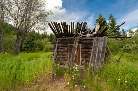 yukon territory: Abandoned hunters shack in Hootalinqua -  former telegraph station on Yukon river, Canada