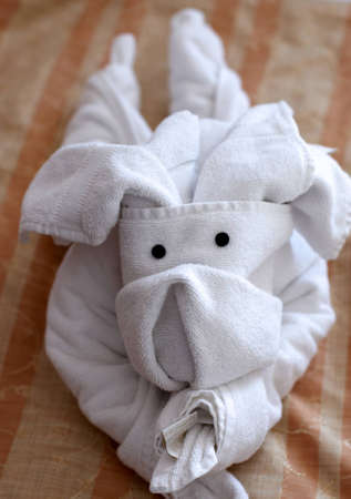 towelling: A cute toy dog made with towels
