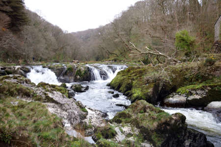 Small waterfalls in Cardiganishire West Wales Stock Photo - 13640016