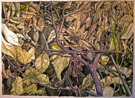 detailed and realistic watercolor depicting autumn leaves