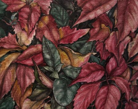 delicate and realistic botanical watercolor of red leaves