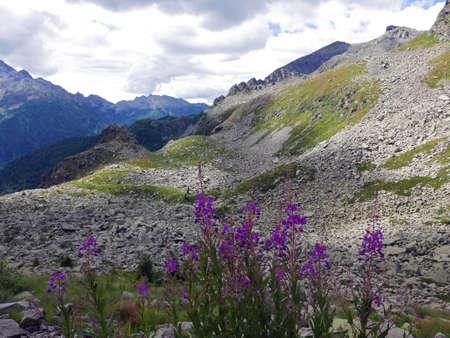 view of the wonderful Italian Dolomites in summer, between rocks and green valleys Reklamní fotografie
