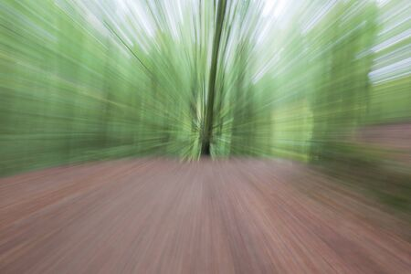 Abstract photo, forest road in summar photographed with different effects of motion and zoom. Colorful textured background. long shutter speed.