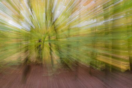 Abstract photo, forest in autumn photographed with different effects of motion and zoom. Colorful textured background. long shutter speed. Reklamní fotografie
