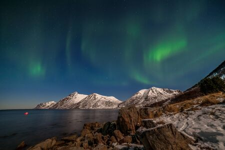 Aurora borealis, northern lights, Polar lights over fjord mountains with many stars on the sky in Lofoten islands, Norway, long shutter speed. Stockfoto