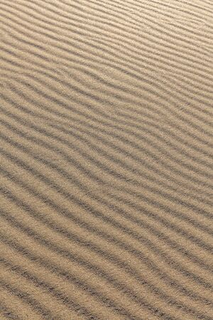 Sand texture. Sandy beach for background. Top view. selective focus