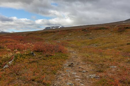 The animal trail that tourists use high in the mountains. Sarek, Sweden, selective focus