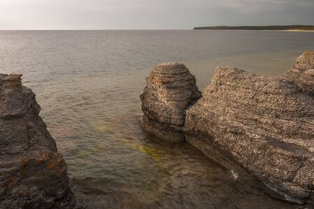 Coastal limestone formations, raukar, at Byrum at the swedish island Oland, the island of sun and wind in the Baltic Sea, selective focus