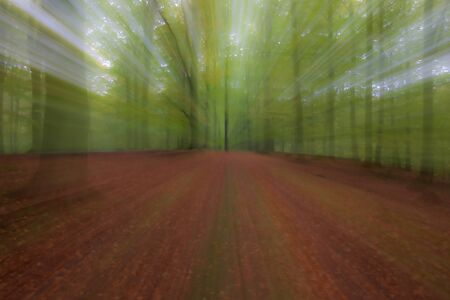 Abstract photo, forest in summer photographed with different effects of motion and zoom. Colorful textured background. long shutter speed. Reklamní fotografie