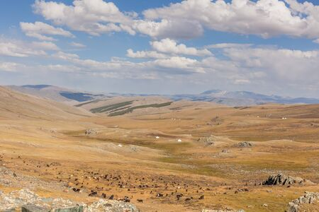 Motorcycle traveler in helmet riding a motorbike in the steppes of Mongolia.
