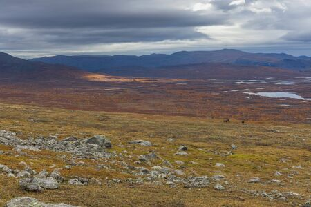 Mountains of Sarek National Park in Lapland, autumn, Sweden, selective focus