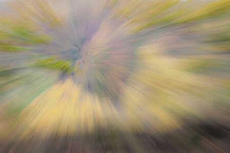 Abstract photo, forest in autumn photographed with different effects of motion and zoom. Colorful textured background. long shutter speed.