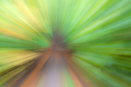Abstract photo, forest in summer photographed with different effects of motion and zoom. Colorful textured background. long shutter speed. Stockfoto