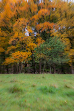 Abstract photo, forest in autumn photographed with different effects of motion and zoom. Colorful textured background. long shutter speed. Stockfoto