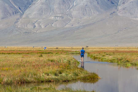 Road in the field after the rain. A tourist on the road during the flood, Altai, Mongolia.