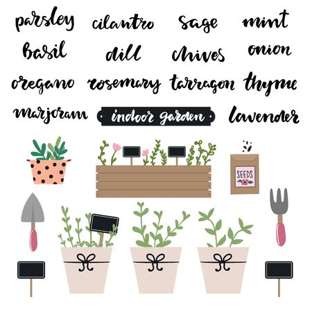 Set of hand written lettering herbs names: mint, basil, parsley, marjoran, thyme,dill, lavender,oregano. Indoor kitchen gardening set of elements, , spade, pitchfork, seeds. Indoor garden concept Ilustração