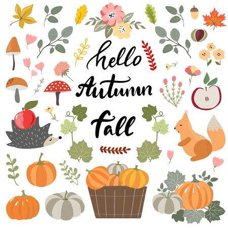 Collection of hand drawn fall elements, animals, pumpkins, ripe fruits, mushrooms, flowers, floral branches and lettering phrases on modern sketch style