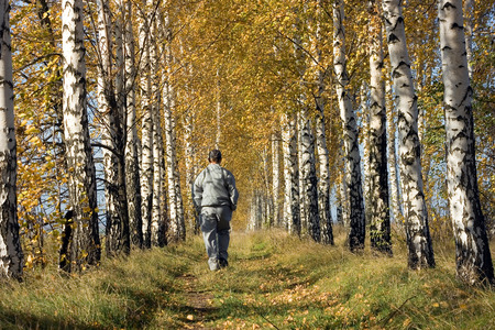 duffel: Autumn walk among the yellowed birches Stock Photo