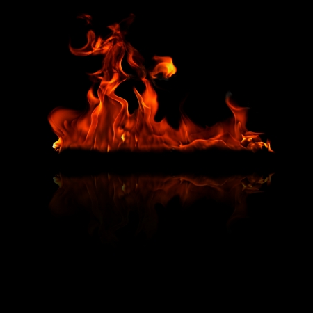 Fire flames on a black background  Stock Photo - 18419474