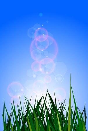 Green grass Stock Photo - 18877825