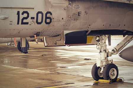f18: A detail of an Spanish Air Force F18