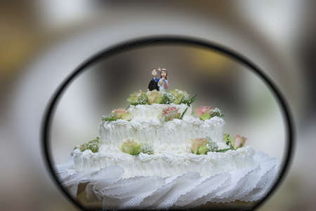 bridegrooms: wedding cake. A typical cake to celebrate the bride and groom