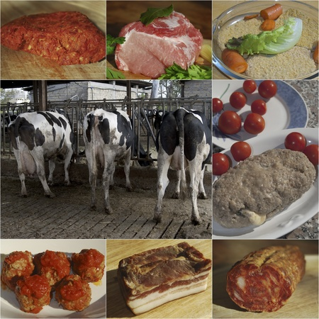 Collage of photography to describe  the processing of the meat Stock Photo - 15616056