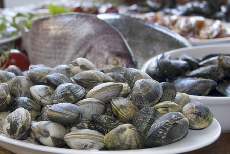 bluefish: fresh mediterranean fish:clams, mussels and other raw fish