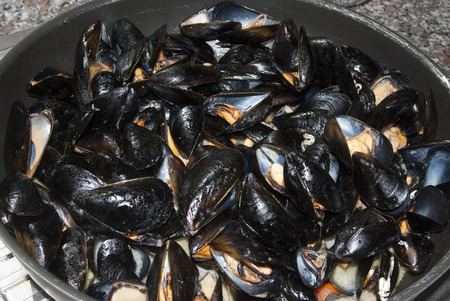 peppered: Traditional sicilian recipe: peppered mussels with tomatoes