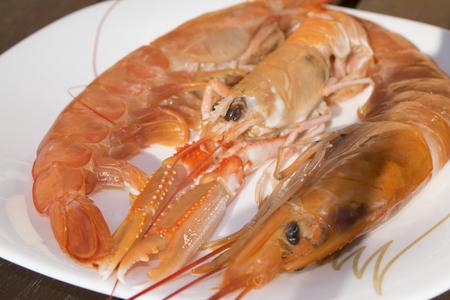 crustaceans: crustaceans typical of the mediterranean sea: raw imperial prawns