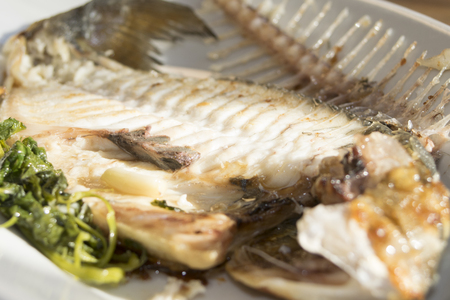 sea recipe: baked  fillet of sea bream with herbs photo