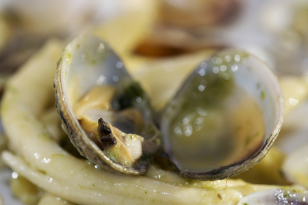 sea animals: detail of a clams in a dish of macaroni with clams