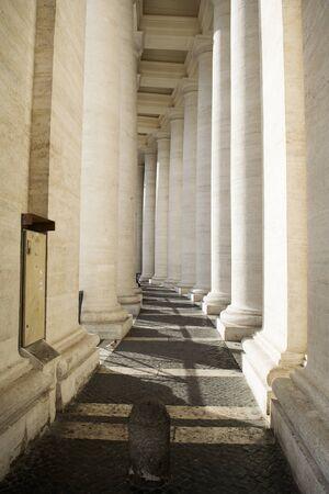 peter's: Saint Peters colonnade in vatican city