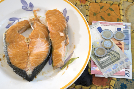 valuable: concept of valuable fish with salmon fillet near some money