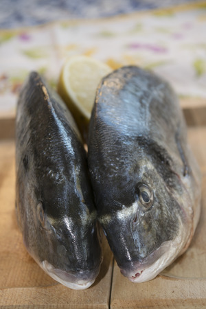 gilthead bream: fresh gilthead bream on a wooden cutting board Stock Photo