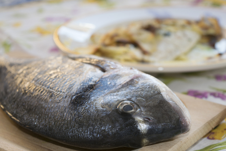 gilthead: fresh and just caught gilthead on a table Stock Photo