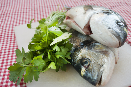 caught: raw sea breams just caught with fresh parsley