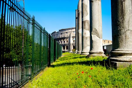 perspectiva lineal: inusual vista del Coliseo de Roma con la columna delante de la Vía de la Conciliación