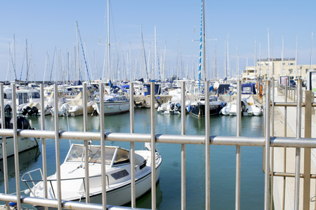 lido: view of port of Rome with Its sailboats