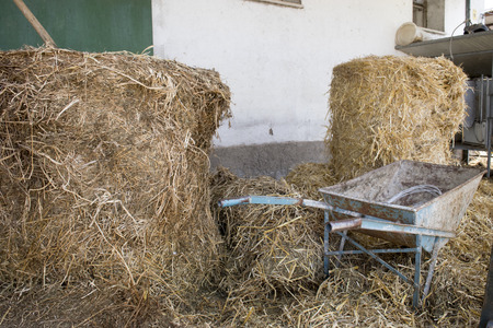 sheafs of hay in a barn with an old wheelbarrow and a hayfork Stock Photo