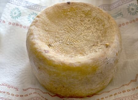 whole cheese of tuscan pecorino