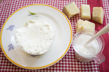 fresh italian ricotta cheese in a plastic mould on a dish