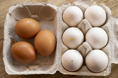 organic eggs from free-range hens in the special cartoons Stockfoto