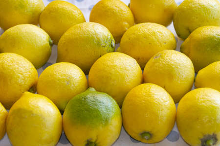 bio and organic lemon wuth edible peel
