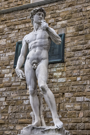 The David of Michelangelo in the Piazza della Signoria Florence
