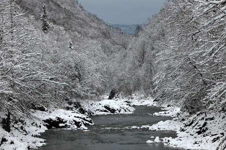 snow break: White river winter