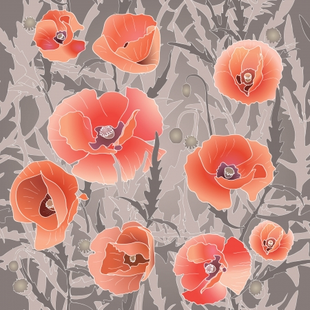 greenfield: Background with red poppy. Red flower and leaves. Vector illustration Illustration