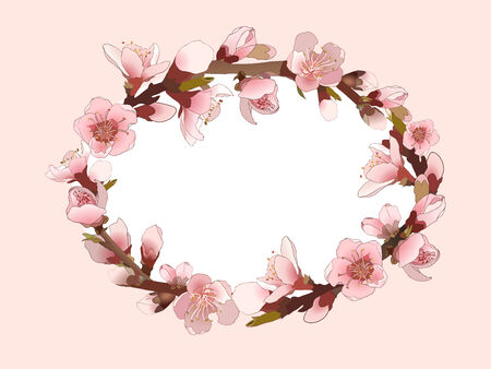 Pattern with blossoming almond branch with pink flowers.  Vector