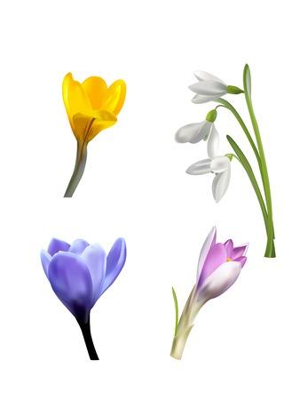 Kleurrijke achtergrond met realistische bloemen en gras. Vector illustratie.